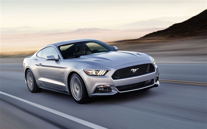 2015 Ford Mustang GT Car HD Wallpaper Views:8962