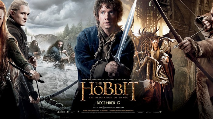 The Hobbit 2-The Desolation of Smaug Movie HD Wallpaper Views:15342