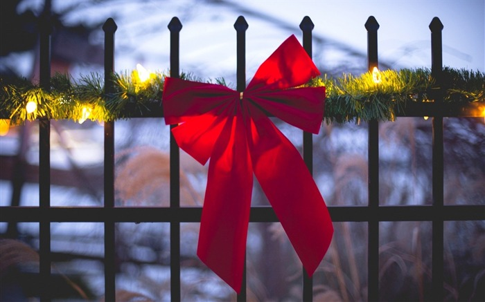 fence ribbon red holiday-HIGH Quality Wallpaper Views:3615 Date:1/3/2014 8:48:27 AM