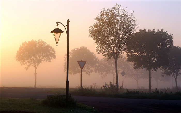 lamp signs fog trees-Pictures HD Wallpaper Views:2931