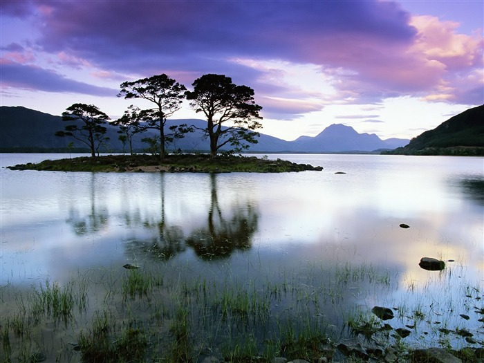 island evening trees lake-Landscape Photo Wallpaper Views:2979