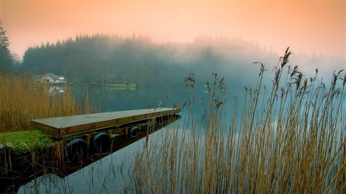 pier fog grass lake-Photo Wallpaper Views:2673