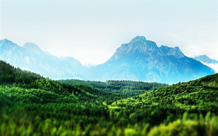 树山绿-照片高清壁纸 壁纸预览