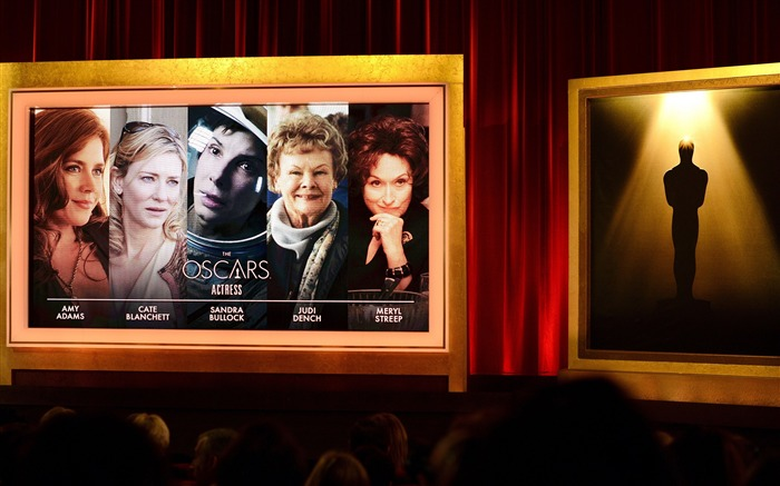 2014 The Oscars 86th Academy Awards Wallpaper 08 Views:3259