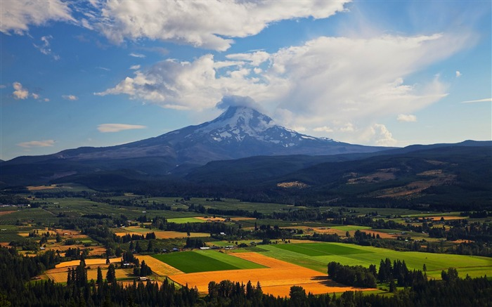Mount Hood Oregon-Nature HD Wallpaper Views:3578