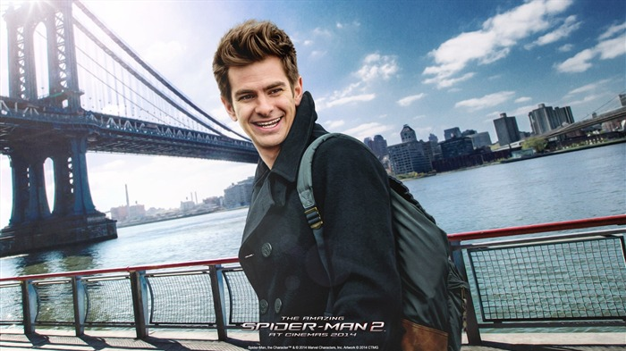The Amazing Spider-Man 2 Movie HD wallpaper 07 Views:2777
