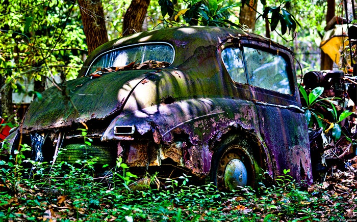 Car scrap yard-Windows Photo Wallpaper Views:3135