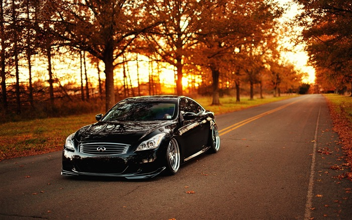 Infiniti G37-Car HD wallpaper Views:4832