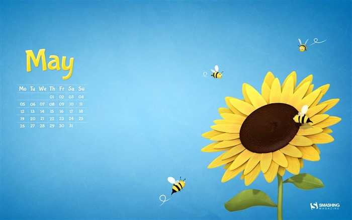 Sunflower-May 2014 calendar wallpaper Views:3047