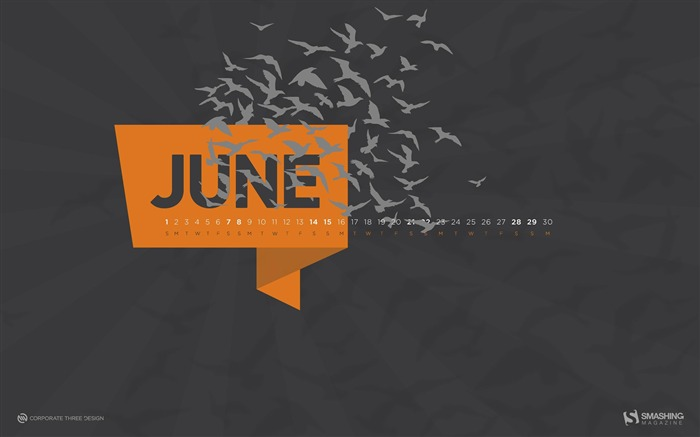 The Birds-June 2014 calendar wallpaper Views:1573