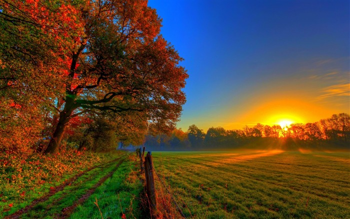 autumn sunset-Scenery HD Wallpaper Views:7092 Date:5/28/2014 7:46:19 AM
