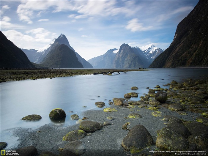Kiwi Sound-National Geographic Wallpaper Views:3151