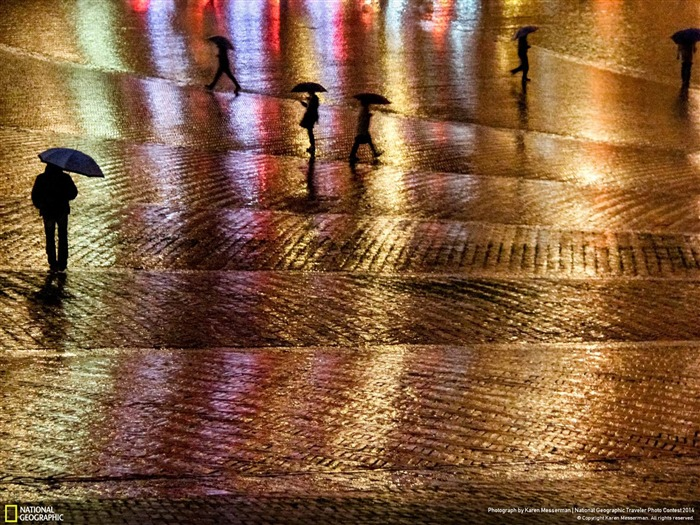 Rainy Night in the Piazza-National Geographic Wallpaper Views:2788