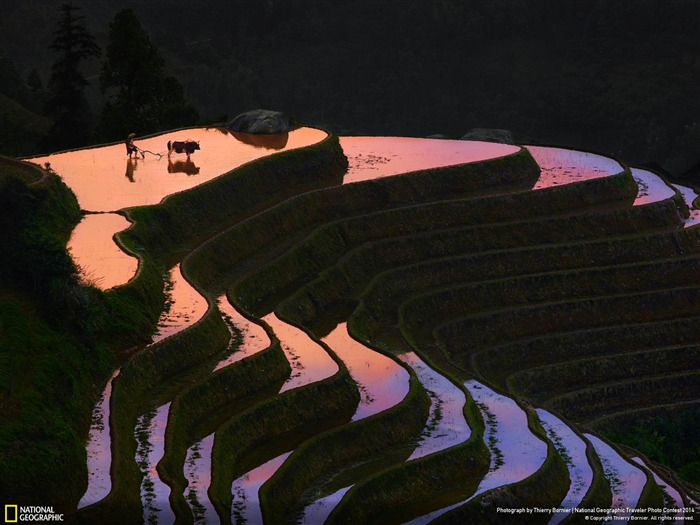 Sunset in longji-National Geographic Wallpaper Views:1901