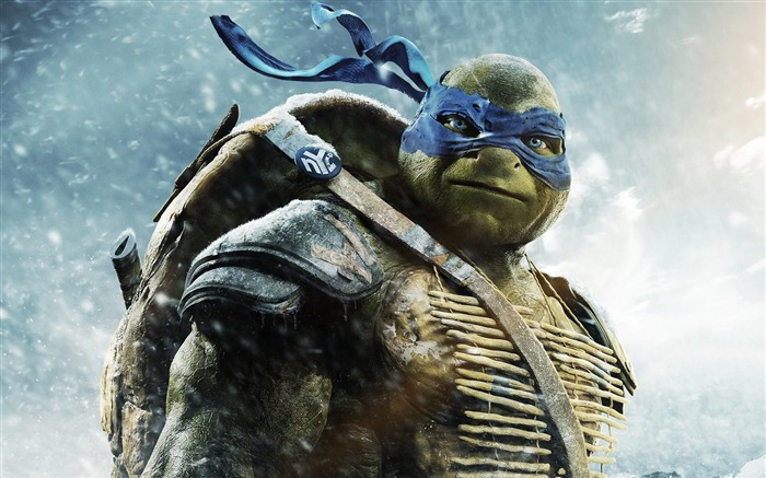 Teenage Mutant Ninja Turtles 2014 Movie HD Wallpaper Views:13543