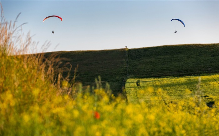 paragliders in the air-scenery HD Wallpaper Views:2664