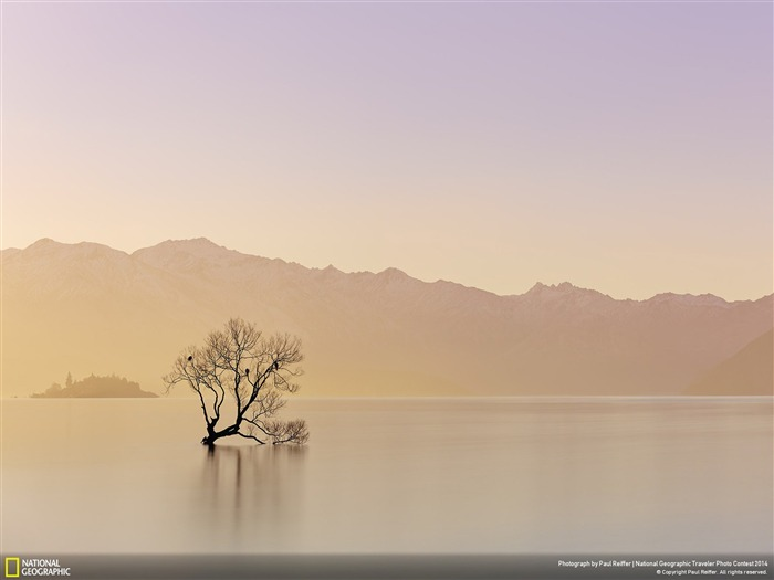 Alone-National Geographic Wallpaper Views:5104 Date:7/22/2014 8:38:50 AM