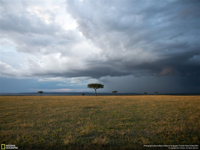 Masai Mara Sunset-National Geographic Wallpaper Views:4035 Date:7/22/2014 8:44:26 AM
