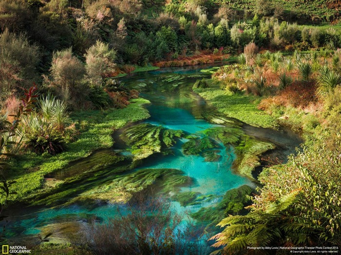 The New Water-National Geographic Wallpaper Views:4768 Date:7/22/2014 8:50:58 AM