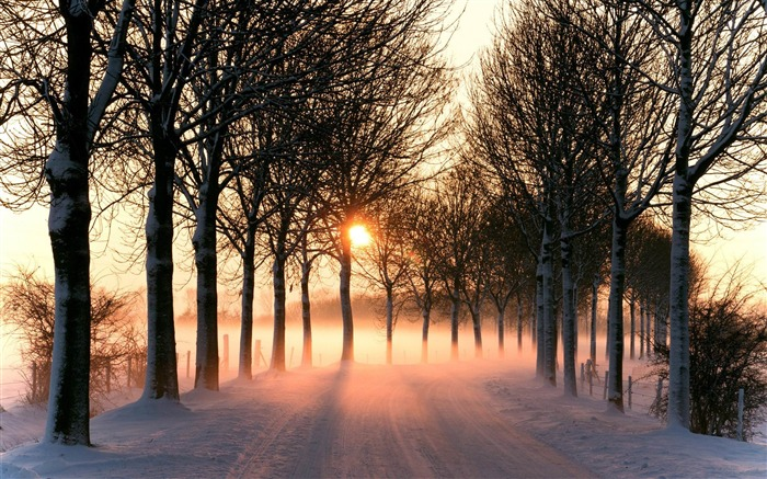 Winter Sunset-Nature Photo Wallpaper Views:1900