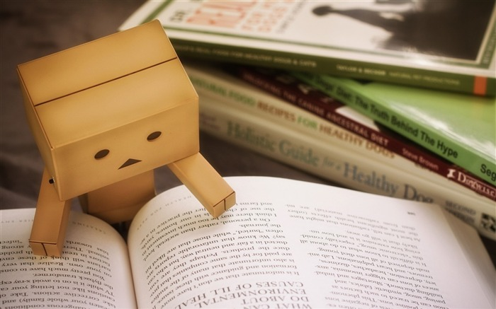danbo cardboard-High quality wallpaper Views:2817