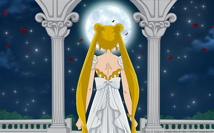 Sailor Moon Anime HD Desktop Wallpaper 01 Views:2964