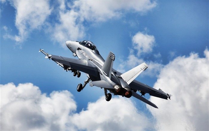F 18 Super Hornet-High quality wallpaper Views:2472