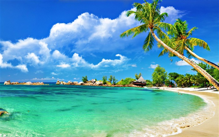 Paradise Tropical Beach-HD Desktop Wallpaper Views:3150