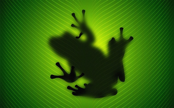 Frog Silhouette Behind-High Quality HD Wallpaper Views:2353