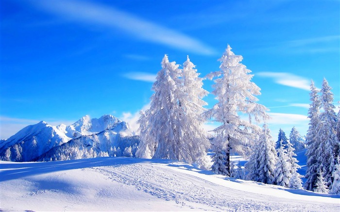 Most beautiful winter landscape HD wallpaper 02 Views:4193