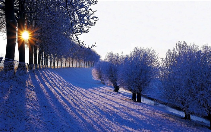 Most beautiful winter landscape HD wallpaper 06 Views:4369