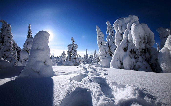 Most beautiful winter landscape HD wallpaper 07 Views:3441