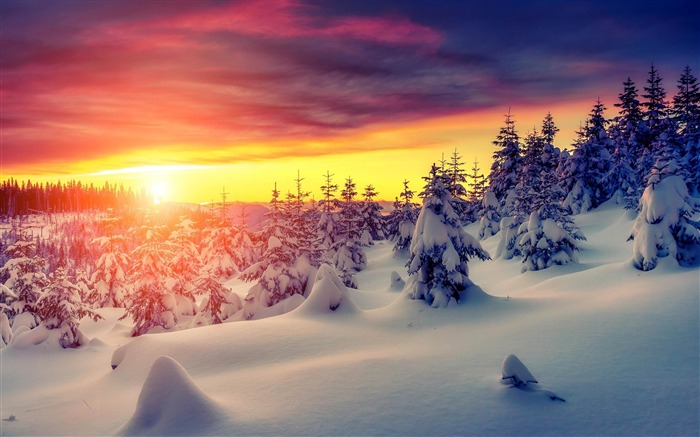 Most beautiful winter landscape HD wallpaper 13 Views:4098