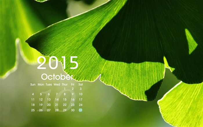 2015 Calendar Desktop Themes Wallpaper Views:17512