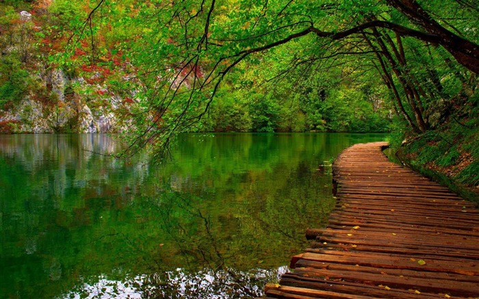 nature river wooden path-HD Widescreen Wallpaper Views:3691