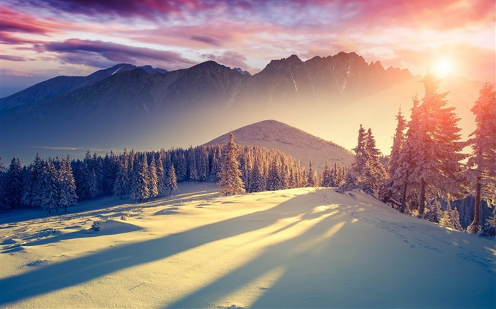 sunset winter shadows-HD Widescreen Wallpaper Views:2070