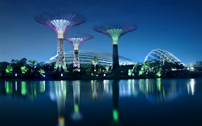 gardens by the bay-High Quality HD Wallpaper Views:3554
