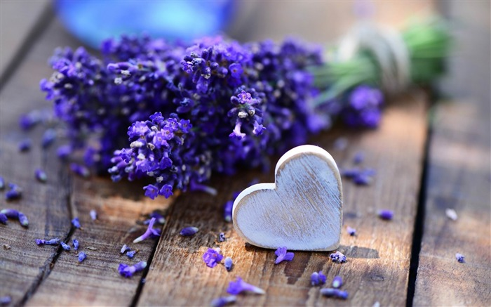 lavender and heart-Photo HD Wallpapers Views:4876