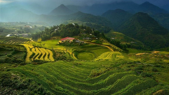 rice terraces in vietnam-Photo HD Wallpaper Views:3042