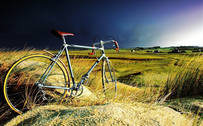 vintage bicycle-High Quality HD Wallpaper Views:1762