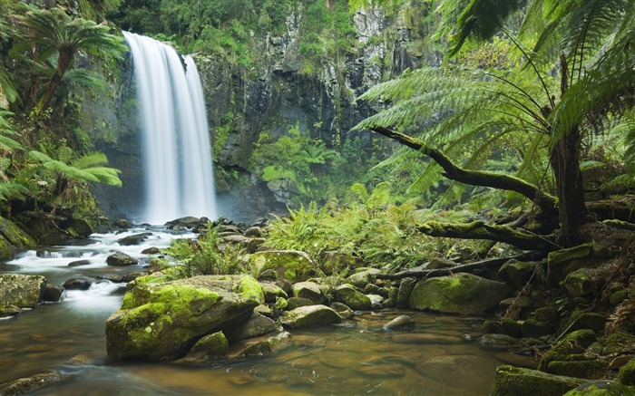 Forest Waterfalls-photo HD wallpaper Views:2336