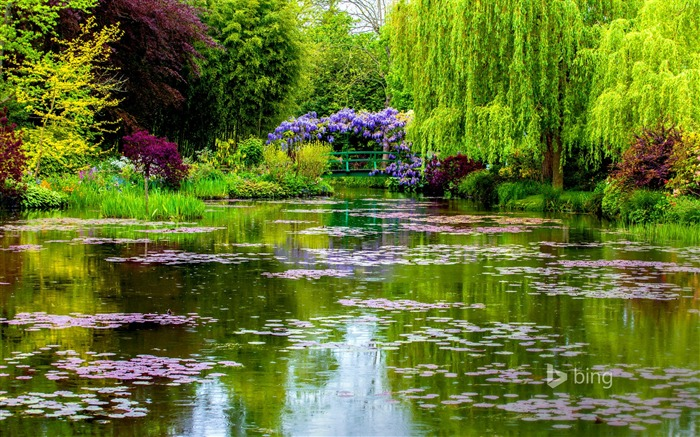 Beautiful pond garden-2015 Bing theme wallpapers Views:1825