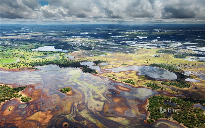 Vast marshes-2015 Bing theme wallpaper Views:1301