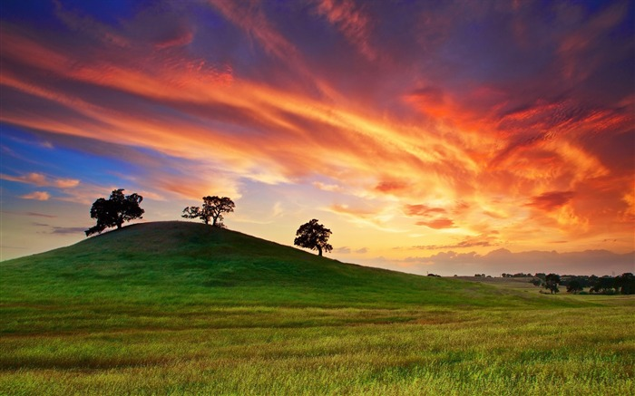 california sunset spring-Scenery HD Wallpaper Views:2668