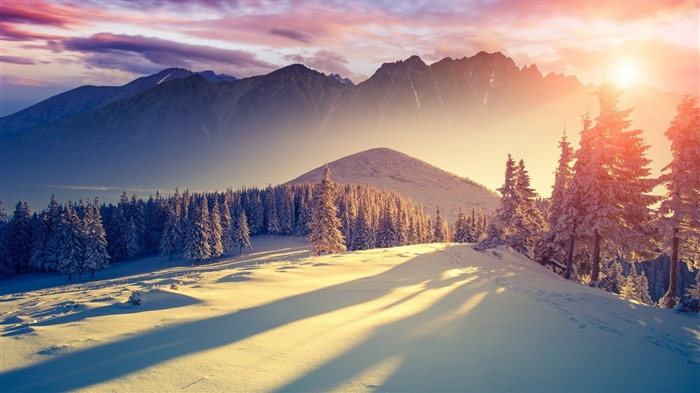 winter freshness landscapes-Nature HD Wallpaper Views:1422