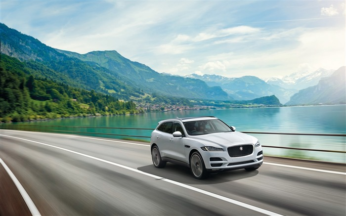 2016 Jaguar F Pace Series HD Wallpaper Views:13677