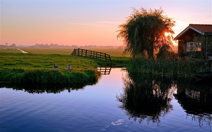 pond house sunset ducks village-Photography HD wallpaper Views:2034