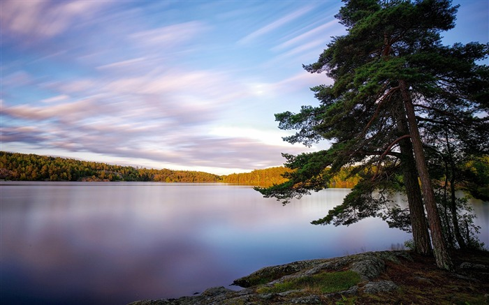 sweden lakes trees-Photography Wallpaper Views:2573