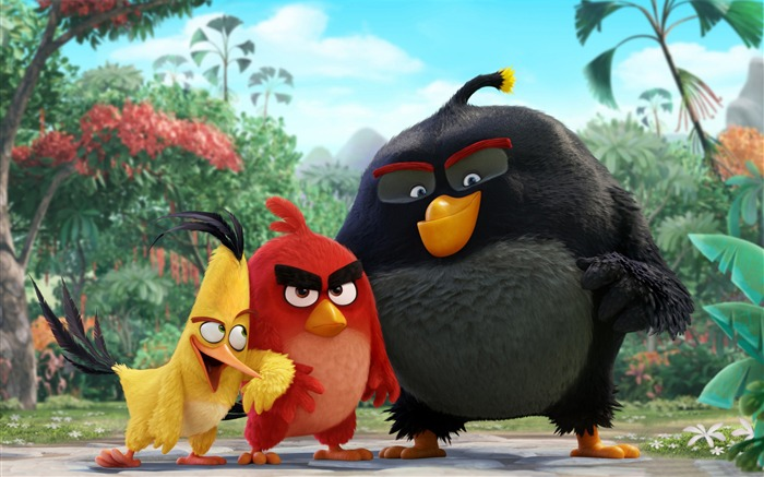 The Angry Birds Movie 2016 HD Wallpaper Views:10400