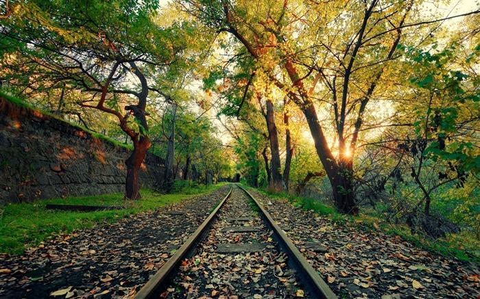 Armenia Yerevan Forest Railway High Quality Wallpaper Views2498